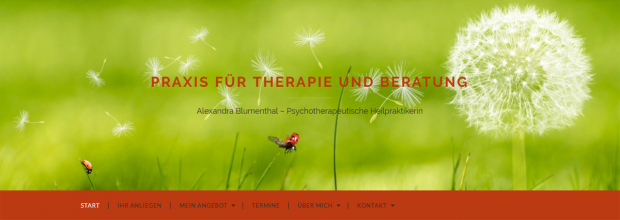 Bildschirmfoto der Website (Header)